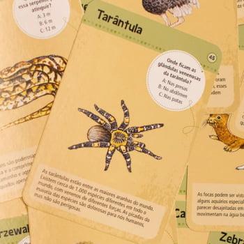 50 Animais de Zoologico